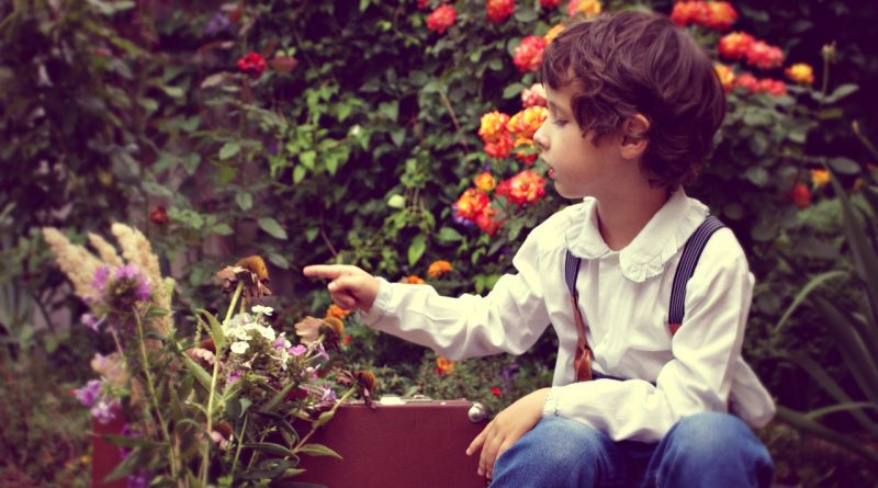 Apartment Gardening with Kids