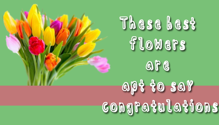 flowers are apt to say congratulation - tvasiapacific